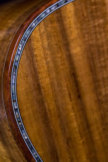 Acoustic Guitars: Compare Acoustic Guitars. Buying Guide.