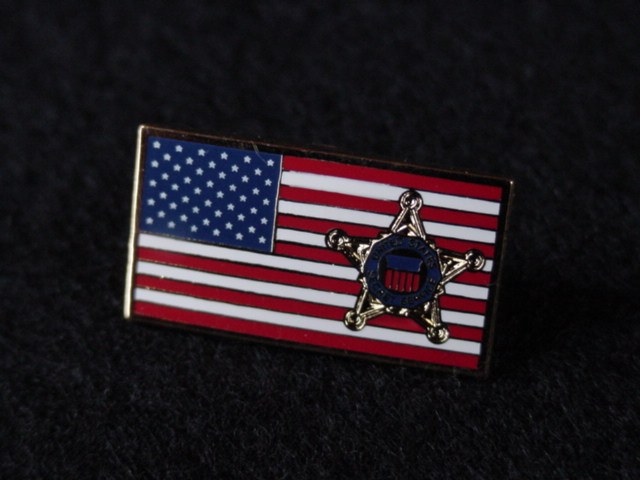 flag pin with star now worn by a lot of republicans