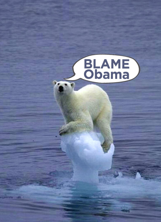 polar bear and global warming essay Essay editorial rants  polar bears are suffering from the ravages of climate change  polar bear, polar bear and global warming, polar bear population, polar.