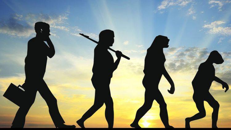 reverse evolution, man to ape
